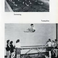 trampoline 1956.jpg